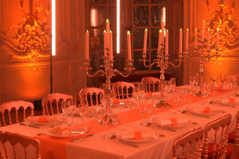 wato-agence-evenementielle-paris-le-bon-coin-soubise-diner-exceptionnel-marie-antoinette-chateau-bibliothèque-intrigue-sombre-lumiere-rouhe-décors-nouriture-assiette-joie-acting-3.jpg