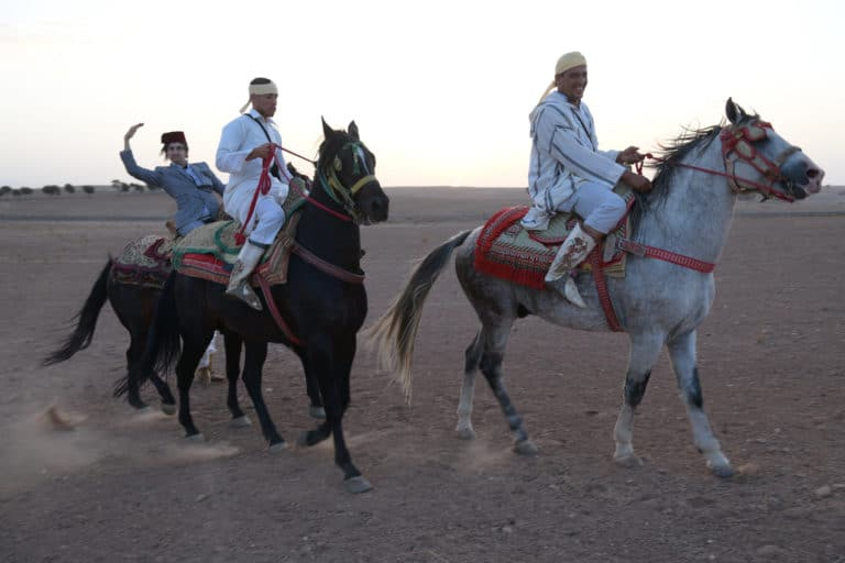 fantasia cheval chevaux garde equestre desert agafay voyage incentive team building voyage agence wato evenementiel event taleo cinq ans the tatane project marrakech maroc maghreb
