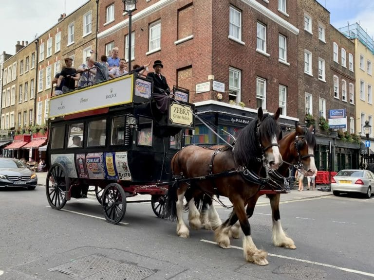 fun horse carriage london vintage double decker bus with horses group zebra grate polish uk the ostler carriages
